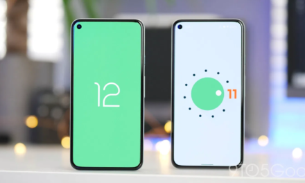 Android 12 – znamy kolejne nowe funkcje