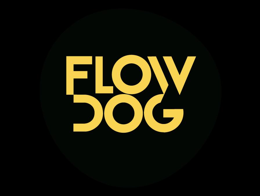 IoT, technologie przyszłości i pandemia – rozmawiamy z FlowDog