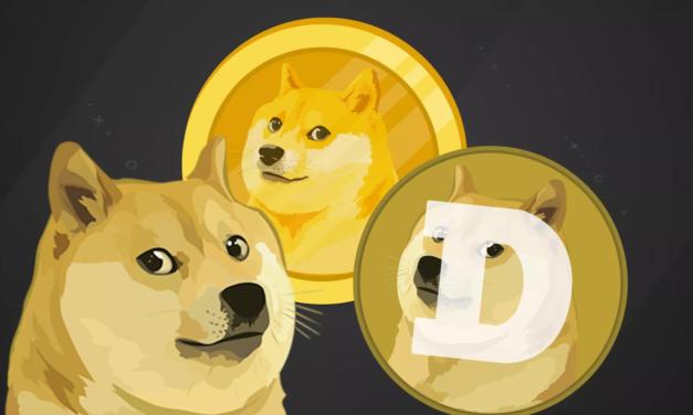 Dogecoin jest już warty ponad 25 centów od sztuki!