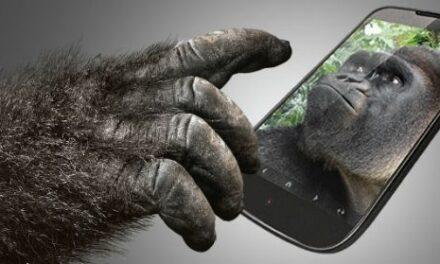 Corning, twórcy Gorilla Glass otrzymali 45 mln dol. od Apple
