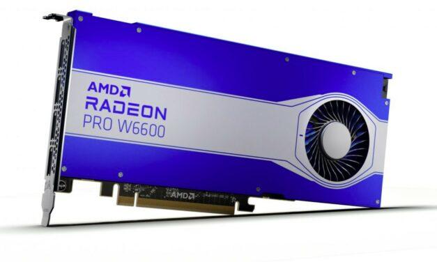 AMD Radeon Pro W6800, W6600 i W6600M już oficjalnie
